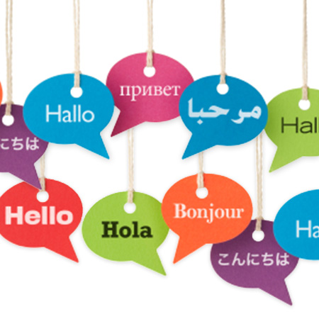 The language collection provides an abundance of language learning resources covering everyday conversation, business communication, travel, Chinese dialects, stories and literature for children as well as examination reference materials.